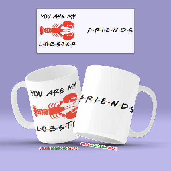 Friends Box - ნაკრები სერიალიდან მეგობრები 5
